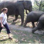 Bobbi with Elephants