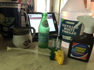 Photo From: 2-Step Disinfectant Spray