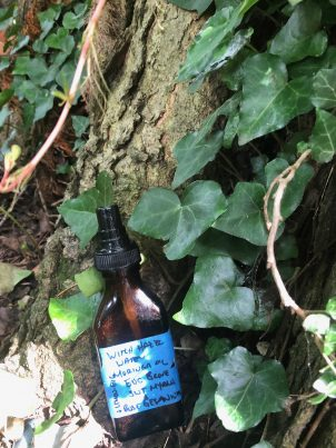 Photo From: 4 Pronged approach to repelling Ticks – repel, kill, & prevent with sprays, lotions, and oils