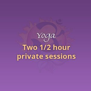 Two 1/2 Hour Private Sessions